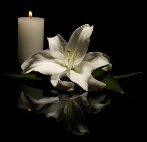 Condoléances : Daniel Debonduwe